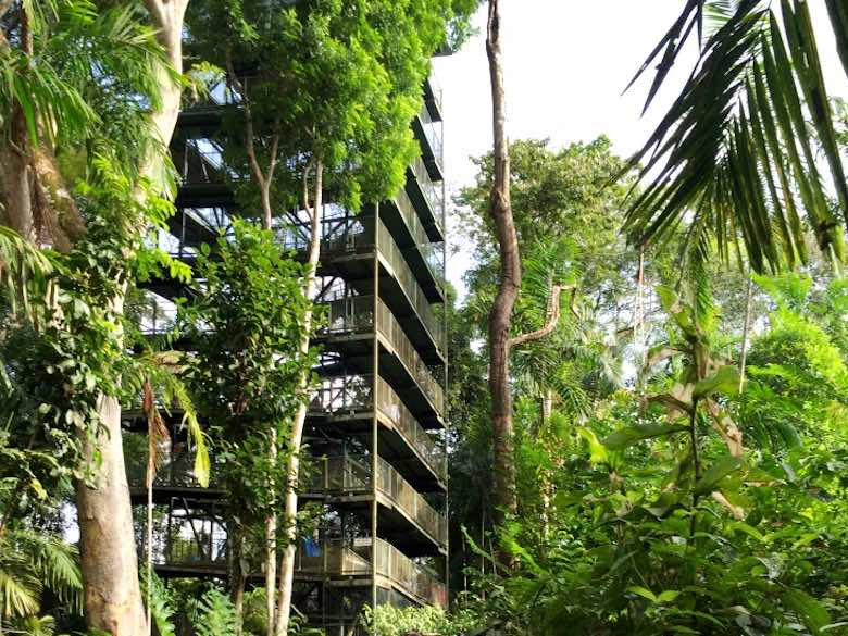 The observation deck in the Gamboa rainforest resort, only to be reached by aerial tramway