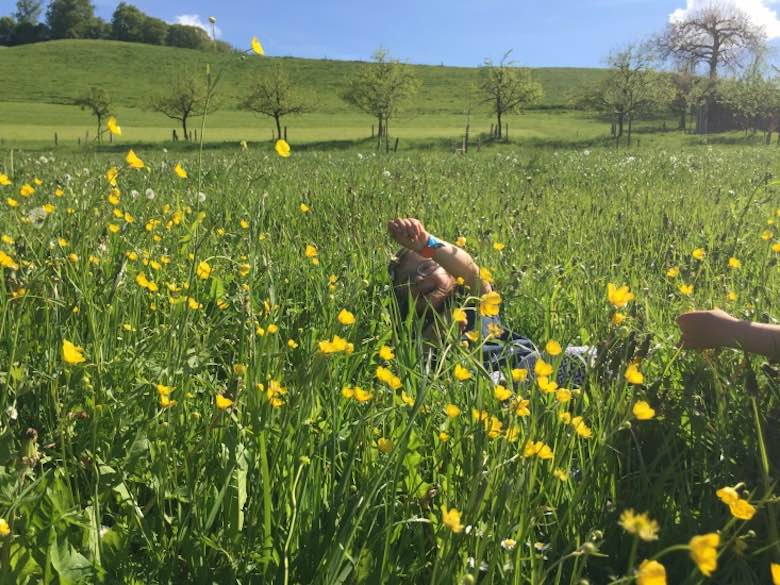 CosmopoliClan's Alegra lying amidst yellow flowers on the rolling green hills of the Emmental region in Switzerland