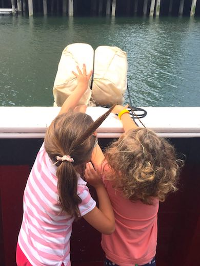 Two little girls throwing the tea into the sea from aboard one of the restored ships at the Boston Tea Party Museum, hands-on learning about Boston's heritage