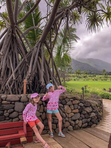 Two little girls exploring Maui Tropical Plantation, one of the top things to do in Maui with kids
