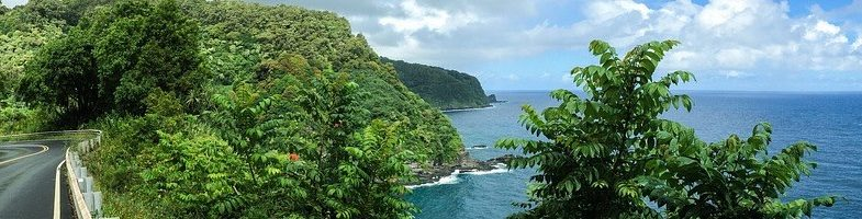 Best Road to Hana stops in Maui | 2021 adventure guide