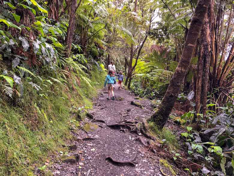 Mother and 2 little daughters hiking the final part of the Kilauea Iki Trail on Big Island Hawaii over a path through the rainforest