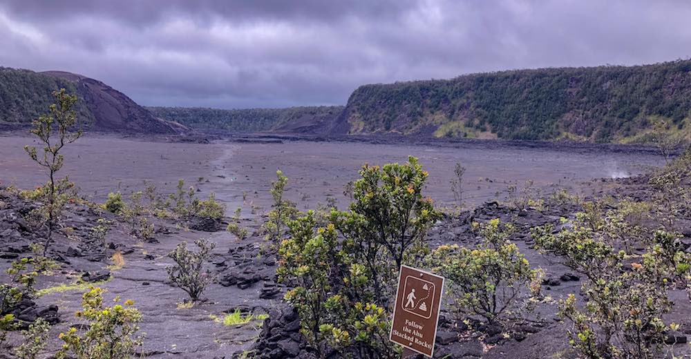 Viewpoint from the rainforest over the Kilauea Iki crater in Hawaii Volcanoes National Park