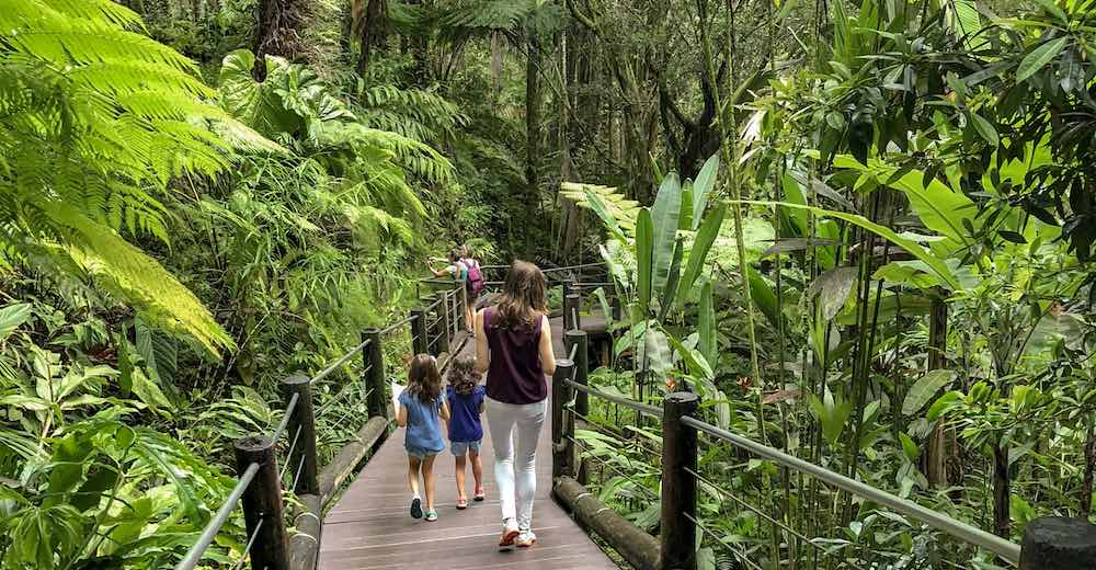 Mother and two kids walking the trail at the Hawaii Tropical Botanical Gardens, one of the best places to visit in Hilo in Hawaii