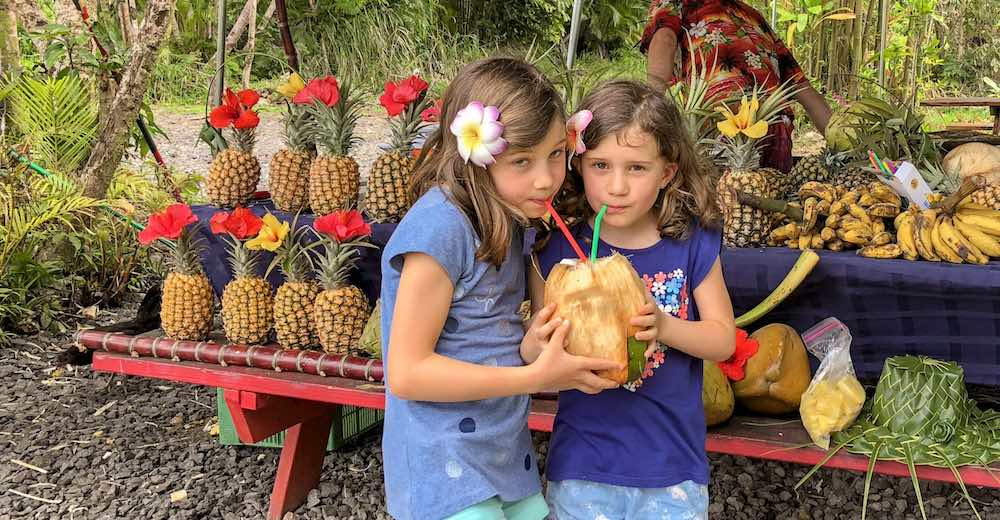 Two little girls drinking fresh coconut juice out of a coconut at a food stall near Akaka Falls State Park, one of the top Hilo attractions