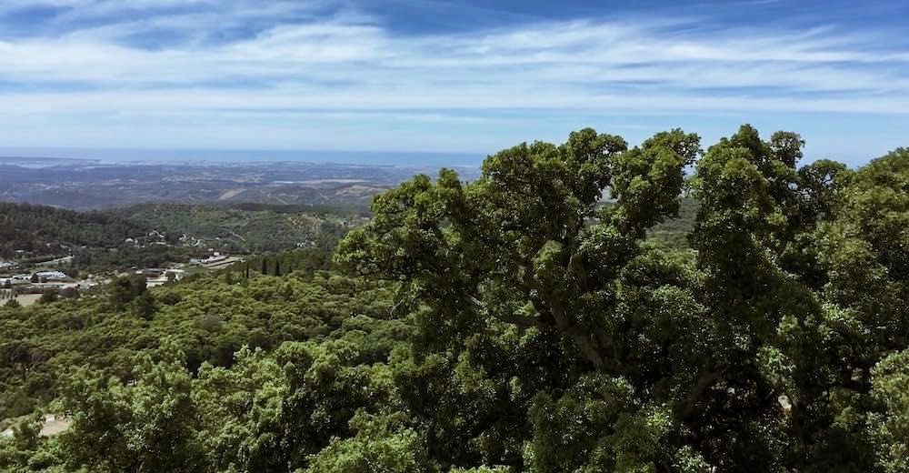 Foia mountain view in Monchique