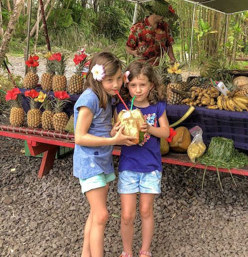 Two girls drinking fresh coconut juice from a tropical fruit stand near 'Akaka Falls