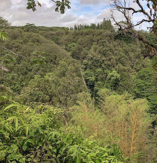Kahuna Falls on Big Island Hawaii