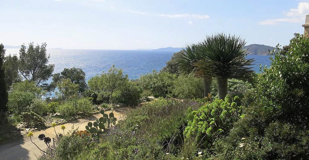 Domaine de Rayol is one of the best day trips from Saint Tropez