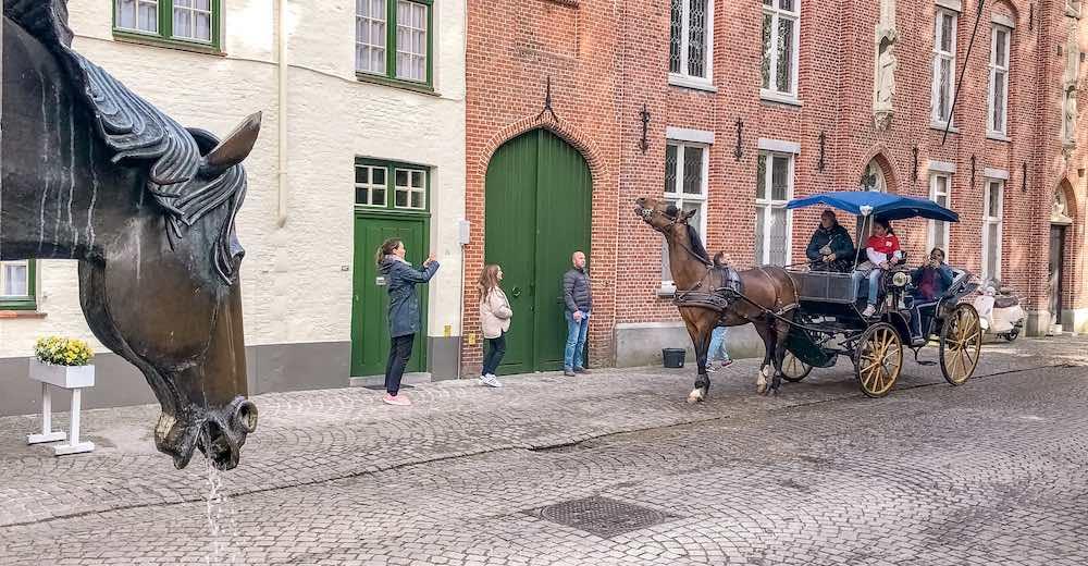 Horse acting up in Brugge Belgium