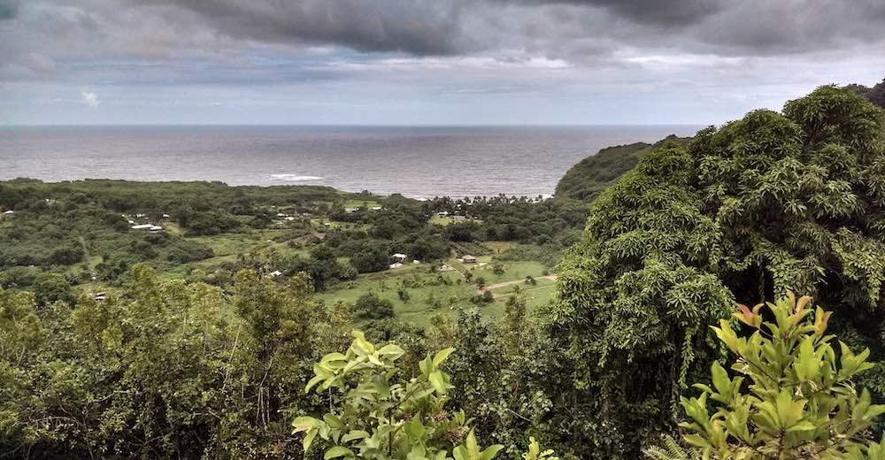 Wailua Valley State Wayside is one of the best Road to Hana stops
