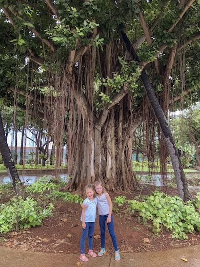 Two sisters smiling in front of a banyan tree in Honolulu