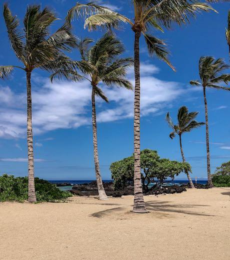 Big Island Beaches: Best Beaches On The Big Island Of Hawaii