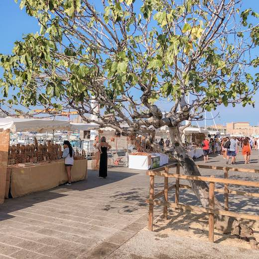 Visiting the provencal market at the Old Port of Marseille is one of the best things to do in Marseille France during summer