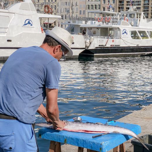 Visiting the fishing market in the Vieux Port is one of the best things to do in Marseille France