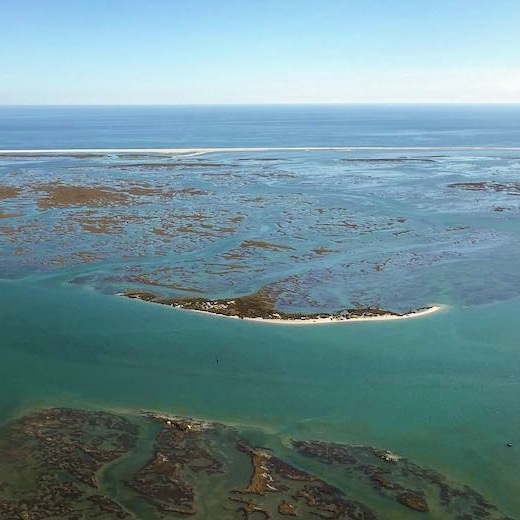 Exploring the Ria Formosa Natural Park is one of the best things to do in Faro Algarve