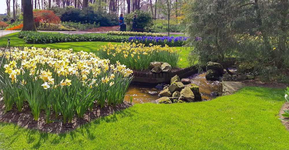 Manicured garden with colorful flowerbeds at Keukenhof Gardens tickets are compared in this article