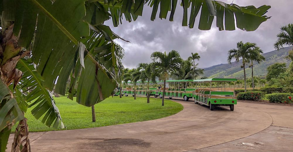 What to do in Maui with kids at the Tropical Plantation is taking the Tropical Express Tram