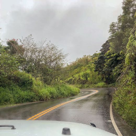 Rainy day on the Hana highway