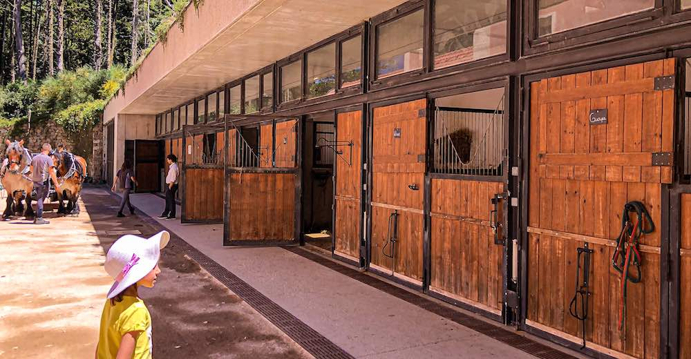 What to see in Sintra park other than the castles, are the stables on the domain of Pena Palace