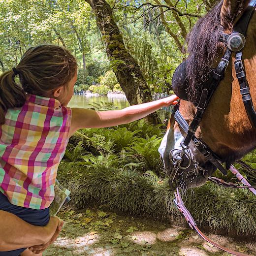 One of the lesser known things to do in Sintra Portugal is meeting the horses in Pena Park