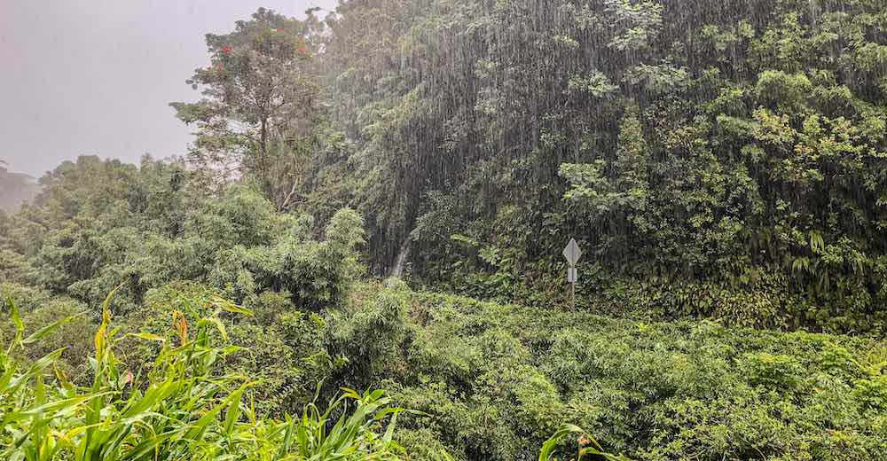 We only got to do a few stops on Road to Hana on Maui because of this terrible weather