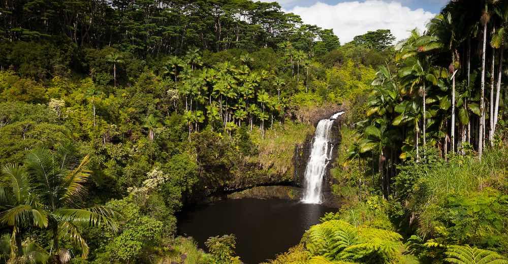 Kulaniapia Falls is one of the best waterfalls in Hawaii to swim