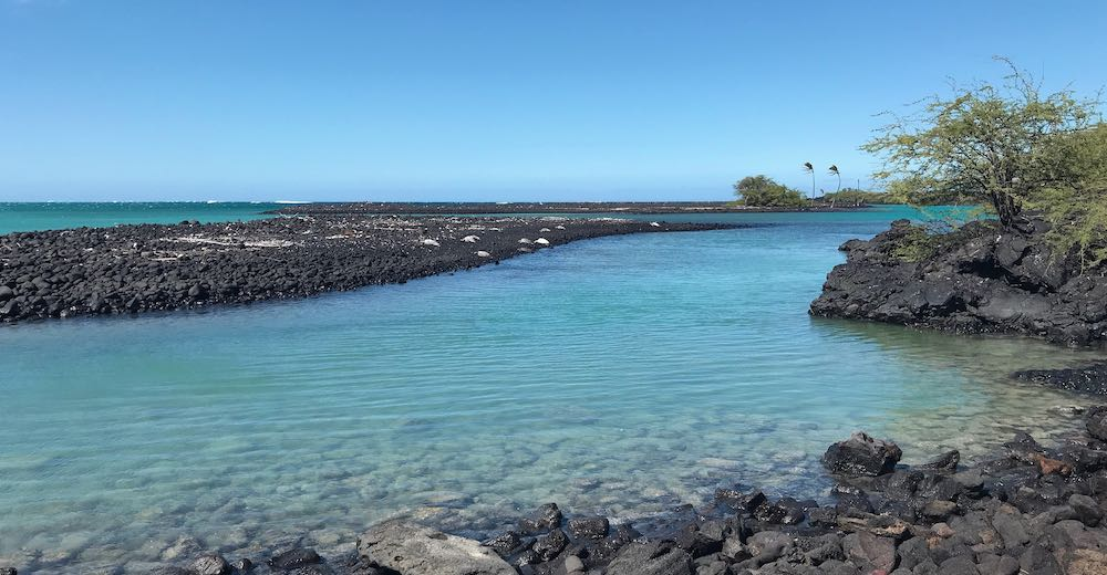 The blue waters of Kiholo State Park Reserve on Hawaii Island