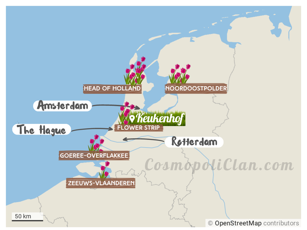Tulip fields Netherlands locations