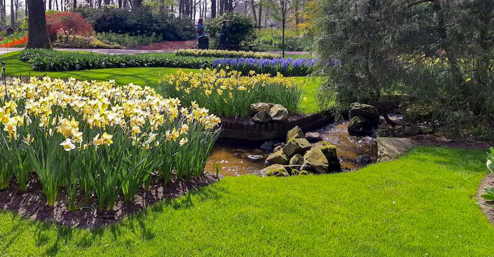 Keukenhof Amsterdam tulip gardens
