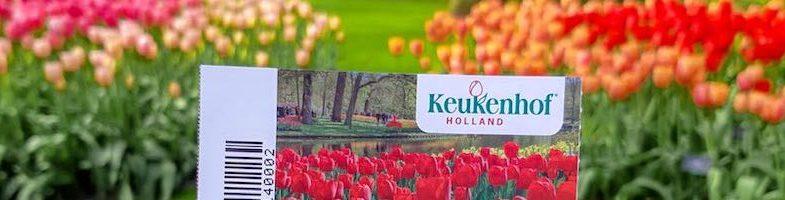 Keukenhof Gardens 2021 | Visit the Amsterdam tulip garden