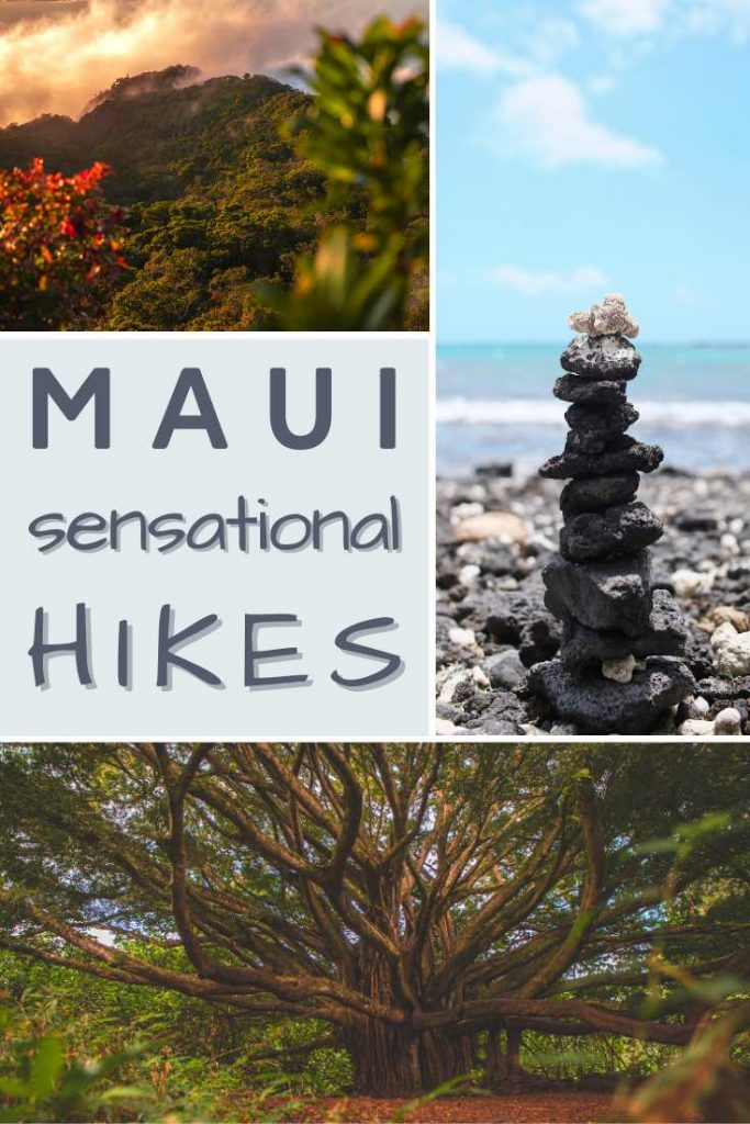 "Ocean and forest views in Maui"" data-pin-description=""Check out the most spectacular hikes in Maui, from volcano hikes to waterfall hikes! 