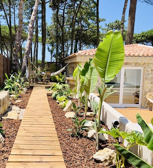 Little house to rent in Portugal with a wooden boardwalk and a pine tree backdrop