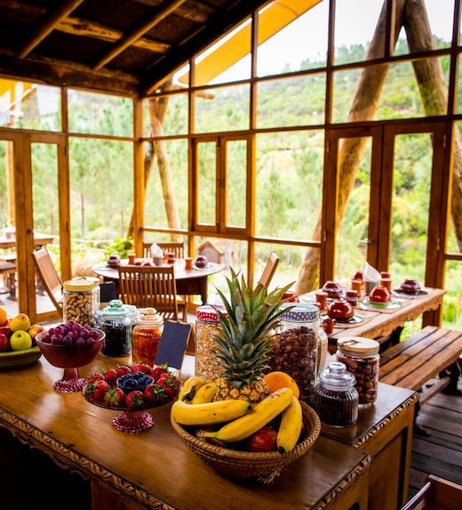 Healthy breakfast buffet and table in  a cabin in the woods