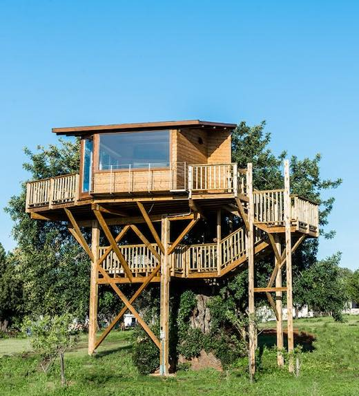 Treehouse renting in Portugal