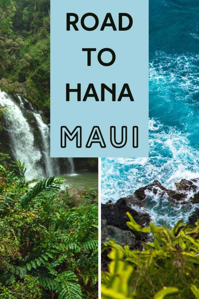 Waterfall and ocean views along the Hana Highway