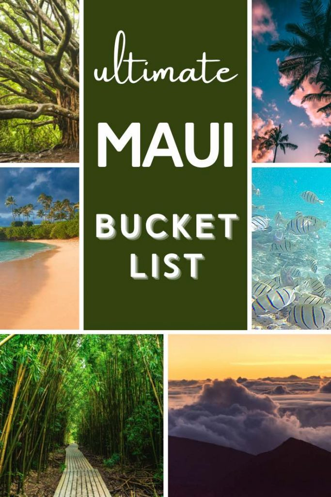 Bamboo forest, snorkeling, watching the Haleakala sunrise and relaxing at the beach are some of the best things to do in Maui Hawaii