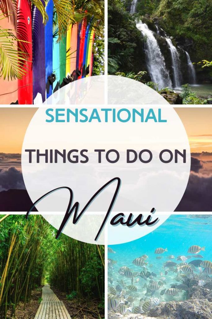 Surf boards, bamboo forest, tropical fish and waterfalls are some of the must-sees on Maui