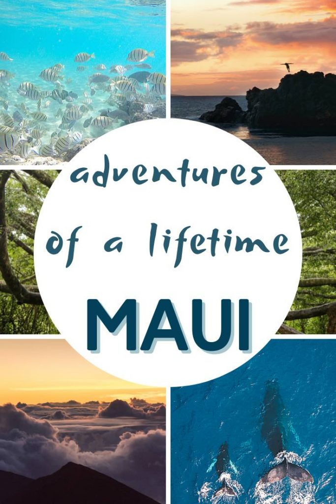 Cliff-diving at sunset, snorkeling with tropical fish, meeting whales and watching the sunrise above the clouds are some of the top activities on Maui Hawaii