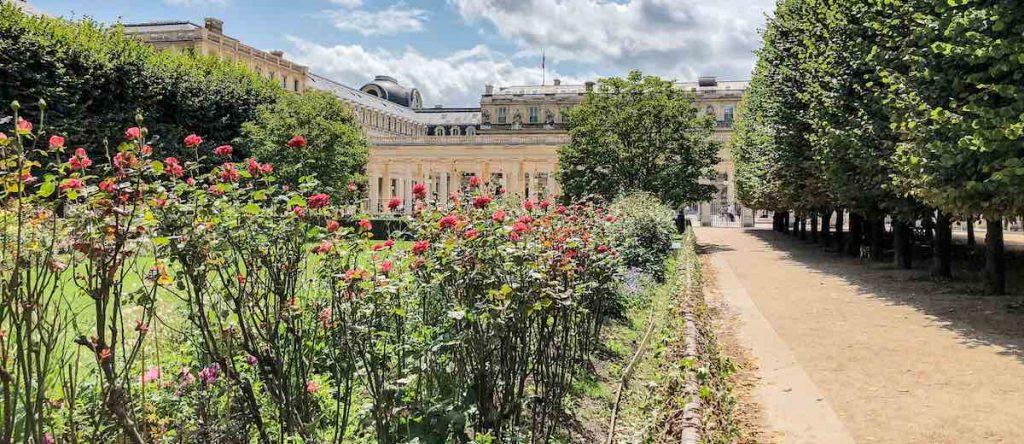 Flowers blooming at the Jardin du Palais Royal in Paris