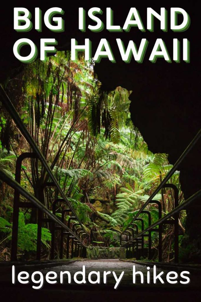 Lava cave and lush decor of ferns
