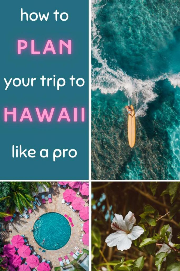 Scenes from Hawaii with a surfer on his surf board, round pool with pink umbrellas and white hibiscus flower
