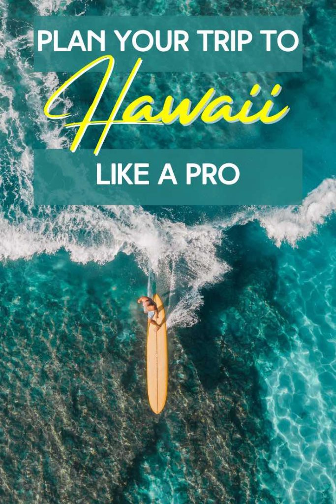 Plan a trip to go surfing