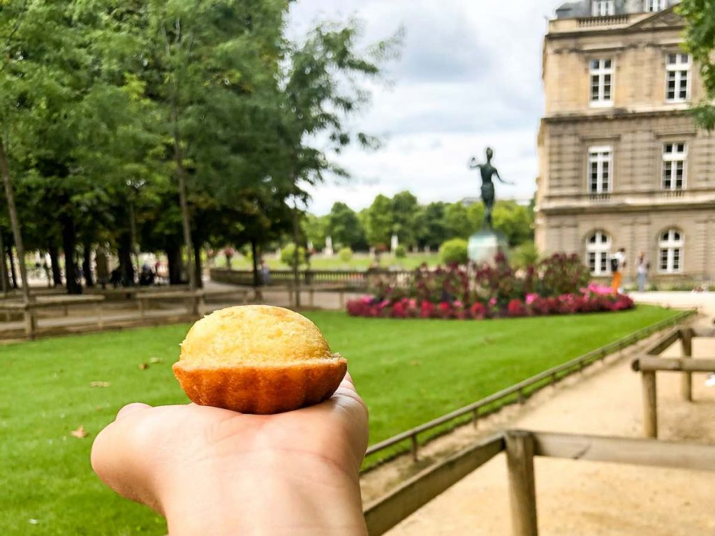 Hand holding a Madeleine at the Luxembourg Gardens in Paris